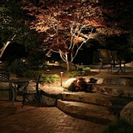 Bring your yard to life at night!